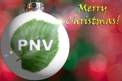 Bon Nadal 2008 dal Pnv :-)