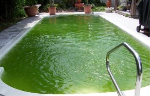 common-pool-problem